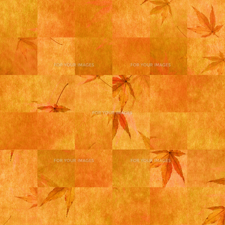 秋 もみじの背景素材の素材 [FYI00424843]