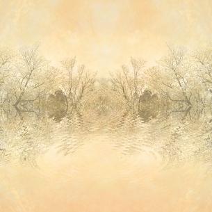桜と古紙の写真素材 [FYI00424854]