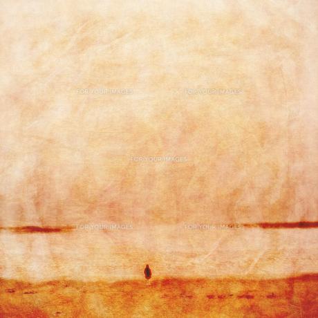 海と少女と古紙の写真素材 [FYI00424858]