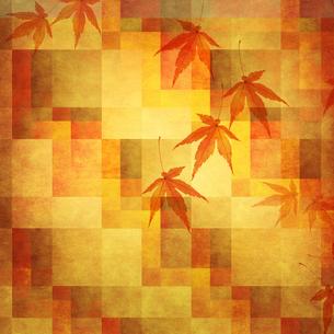 秋の写真素材 [FYI00424954]