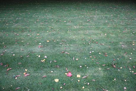 ロンドン公園の写真素材 [FYI00424969]