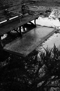 雨上がりのベンチの写真素材 [FYI00425139]
