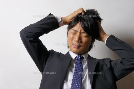 若いビジネスマンのポートレートの写真素材 [FYI00425276]