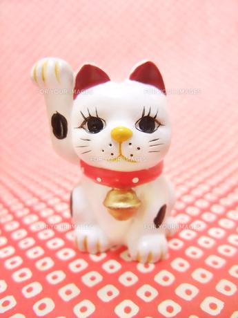 招き猫の写真素材 [FYI00425378]
