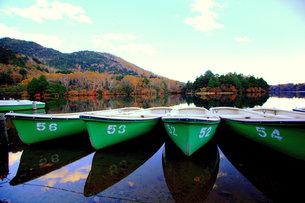 奥日光 湯の湖の風景の写真素材 [FYI00425822]