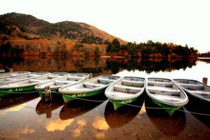 奥日光 湯の湖の風景の写真素材 [FYI00425827]