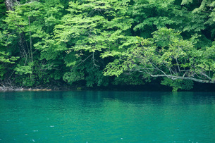夏の十和田湖の写真素材 [FYI00425897]