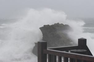 台風の大波の写真素材 [FYI00425903]