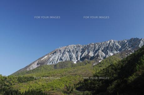 春の大山の写真素材 [FYI00426003]