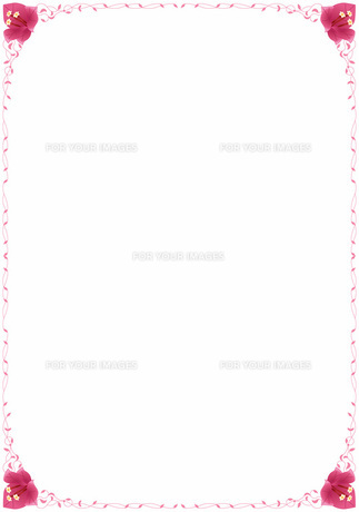 花の飾り罫の素材 [FYI00427215]