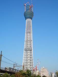 東武線とスカイツリーの写真素材 [FYI00427722]