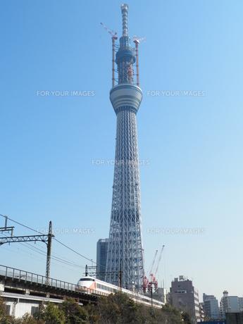 東京スカイツリーとスペーシアの写真素材 [FYI00427799]
