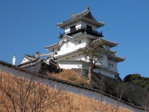 掛川城の写真素材 [FYI00427811]