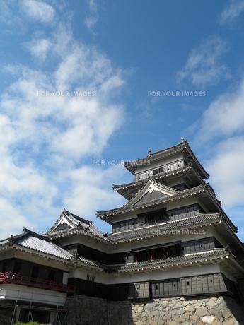 松本城の写真素材 [FYI00427890]