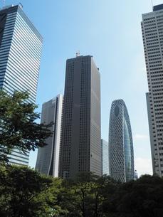 新宿の高層ビル群の素材 [FYI00427932]
