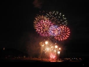長良川全国花火大会の素材 [FYI00428024]