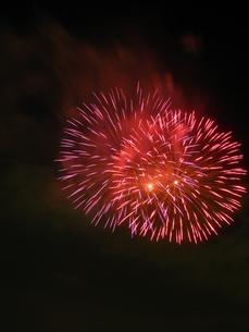 長良川全国花火大会の写真素材 [FYI00428050]