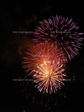 長良川全国花火大会の素材 [FYI00428060]
