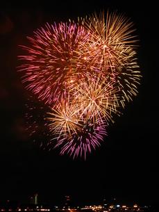 長良川全国花火大会の写真素材 [FYI00428106]