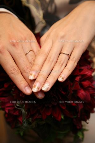 ブーケと結婚指輪の写真素材 [FYI00428180]