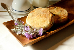 イングリッシュマフィンの朝食の写真素材 [FYI00428255]