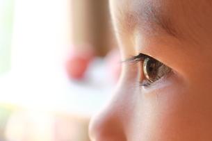 子供の目の写真素材 [FYI00428278]