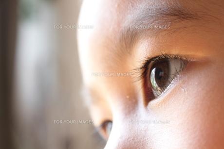 子供の目の写真素材 [FYI00428287]