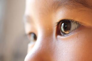 子供の目の写真素材 [FYI00428297]