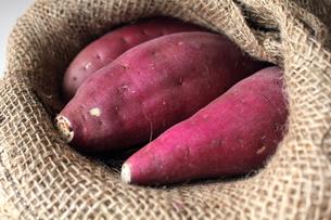 麻袋とサツマイモの写真素材 [FYI00428309]