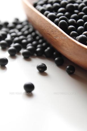 黒千石黒大豆の素材 [FYI00428424]
