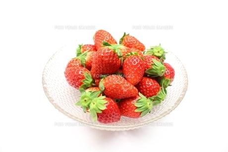 苺の素材 [FYI00428600]