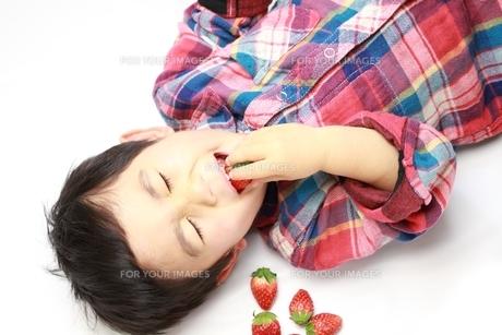 苺と男の子の写真素材 [FYI00428619]
