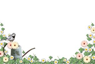 花と緑のフレームの写真素材 [FYI00428702]