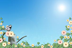 花と緑のフレームの写真素材 [FYI00428719]