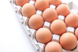 赤卵の写真素材 [FYI00428725]
