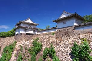 大阪城 千貫櫓と多聞櫓の写真素材 [FYI00428796]