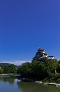 岡山城_青空 の写真素材 [FYI00428839]