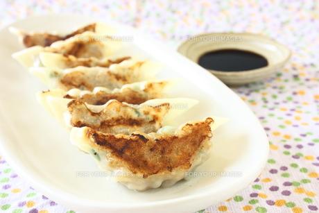 手作り焼き餃子の写真素材 [FYI00429216]