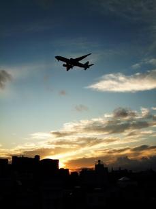 飛行機の写真素材 [FYI00429279]