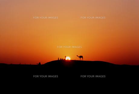 タール砂漠のサンセットの写真素材 [FYI00429291]