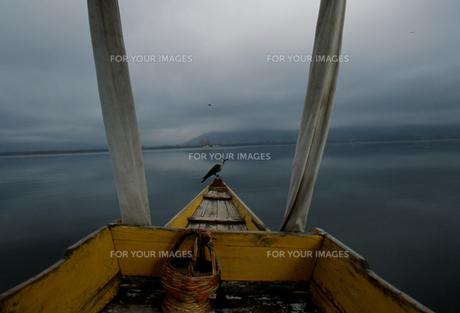 ダル湖のシカラの写真素材 [FYI00429301]