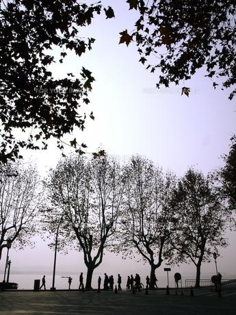 中国杭州の西湖の写真素材 [FYI00429338]