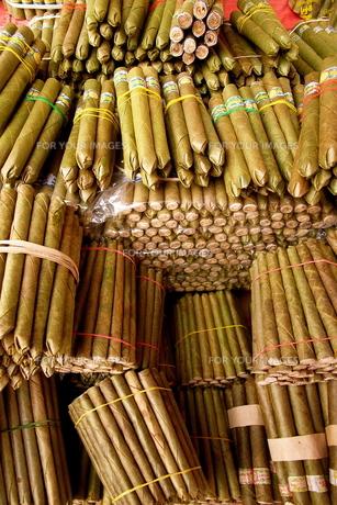 ミャンマーのタバコの写真素材 [FYI00429357]