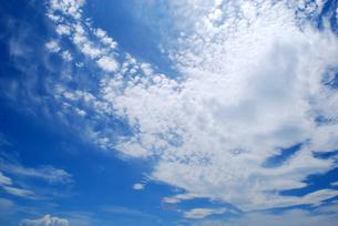 夏の青空と白い雲の写真素材 [FYI00429599]