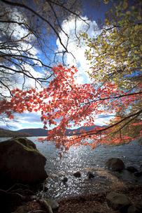 中禅寺湖の写真素材 [FYI00429613]