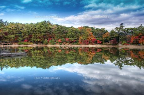 公園の湖の写真素材 [FYI00429685]