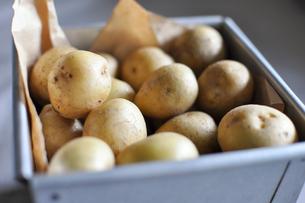 フィリピン産のジャガイモの写真素材 [FYI00429699]
