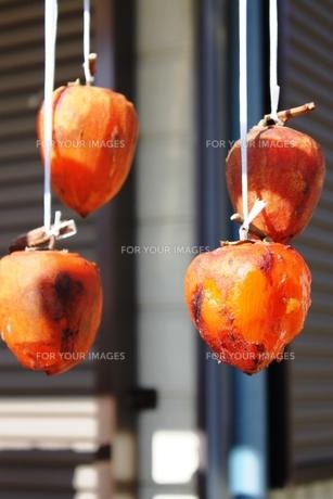 干し柿の写真素材 [FYI00429706]