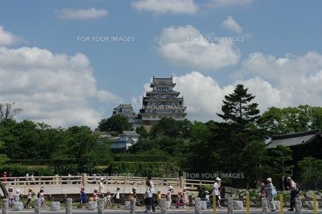 夏の姫路城の写真素材 [FYI00429899]