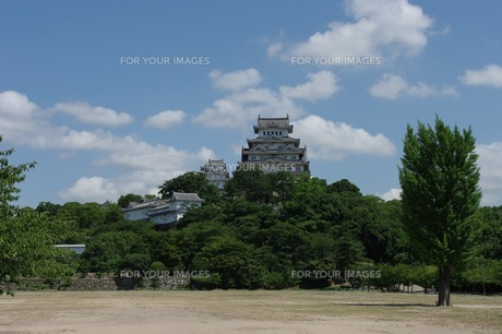 国宝 姫路城の写真素材 [FYI00429904]